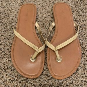 Banana Republic Mazzy Leather Flip Flop In Beige